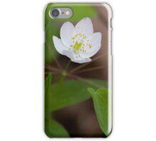 Rue Anemone iPhone Case/Skin
