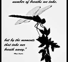 Black and White Dragonfly with quote by Christina  Ochsner