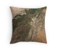 Niger River Inland Delta Mali Africa Satellite Image Throw Pillow