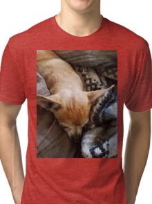 This is my dog Odie Tri-blend T-Shirt