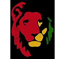 Lion Rasta Reggae Photographic Print