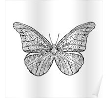 Beautiful black white butterfly Poster