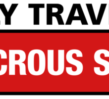 I Only Travel At Ludicrous Speed Sticker