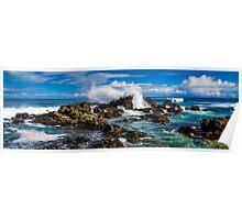 Hawaiian Coast Poster
