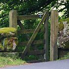 Dartmoor Gate by lezvee