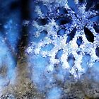 snowflake in blue 8 by Dawna Morton