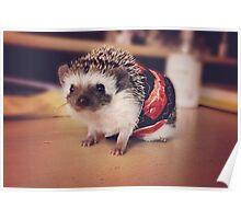 Bacon Hedgehog Poster