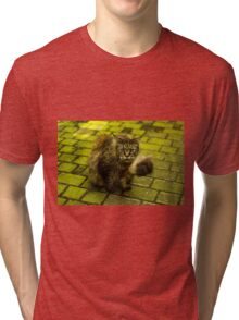 Wild Cat in Kraków (Poland) - Animal Photography Tri-blend T-Shirt