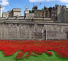 The Tower of London Remembers WWI Panorama by Ludwig Wagner