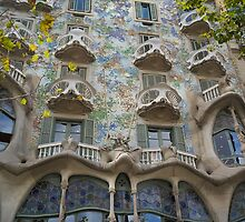 Casa Batlló by Andy Freer