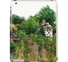 Another abandoned cottage - Donegal, Ireland iPad Case/Skin