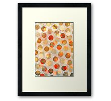 Golden Days of Summer Framed Print