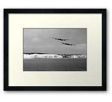 Birds Over The Cliffs  Framed Print
