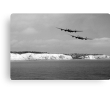 Birds Over The Cliffs  Canvas Print