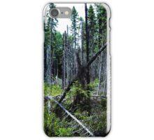 Trees along a bogwalk iPhone Case/Skin