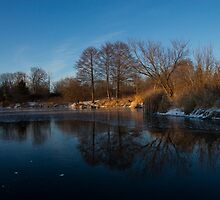 Blue Serenity - Early Morning at a Little Pond off Lake Ontario in Toronto by Georgia Mizuleva