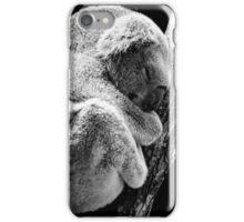 Koala Bear Sleeping In Tree iPhone Case/Skin