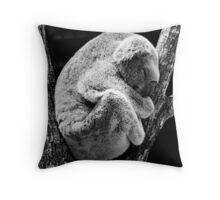 Koala Bear Sleeping In Tree Throw Pillow