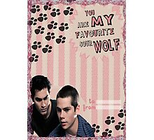 My Teenwolfed Valentine[You Are My Favourite Sour Wolf] Photographic Print