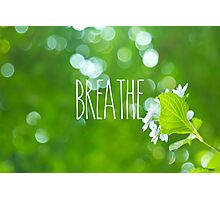 Breathe Refreshing Hydrangea with Green Leaves and Bokeh Photographic Print