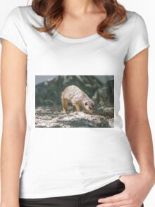 lemur at the zoo Women's Fitted Scoop T-Shirt