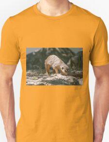 lemur at the zoo T-Shirt
