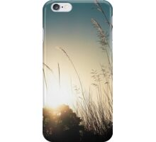 Sunset through the reeds iPhone Case/Skin