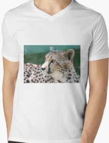 leopard at the zoo Mens V-Neck T-Shirt