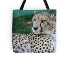 leopard at the zoo Tote Bag