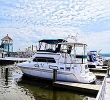 Cabin Cruisers by Founders Park Alexandria VA by Susan Savad