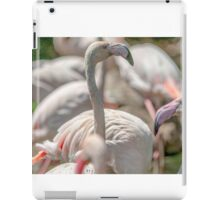 flamingo iPad Case/Skin