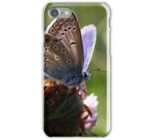 Little Blue Butterfly iPhone Case/Skin