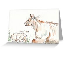 Daisy, the Jersey cow Greeting Card