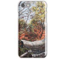 Fallen trees on Southampton Common during Autumn iPhone Case/Skin