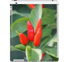 chili in vegetable garden iPad Case/Skin