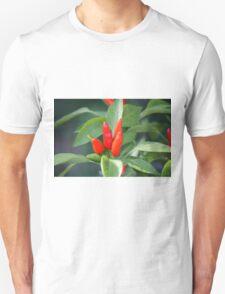 chili in vegetable garden Unisex T-Shirt