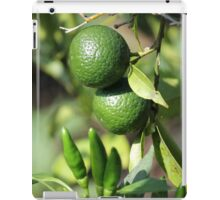 chili and orange in the garden iPad Case/Skin