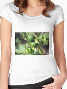 chili and orange in the garden Women's Fitted Scoop T-Shirt