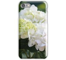 white hydrangea iPhone Case/Skin