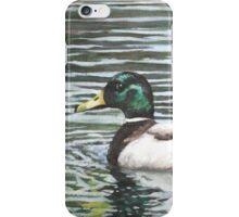 Single mallard duck in water iPhone Case/Skin