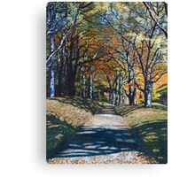 'Autumn Trail ( Bass Lake, Blowing Rock, NC)' Canvas Print
