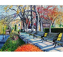 'MEMORIAL PARK, EARLY SPRING'  Photographic Print