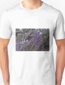wisteria blooming Unisex T-Shirt