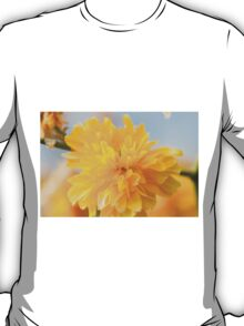 yellow flowers in spring T-Shirt