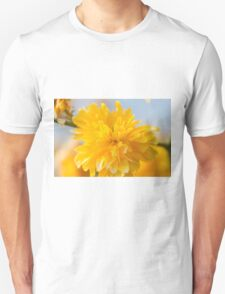 yellow flowers in spring Unisex T-Shirt