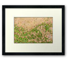 Earth is Green Framed Print