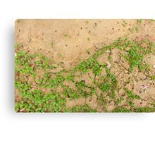 Earth is Green Canvas Print