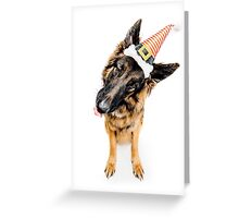 German Shepherd (Humphrey) in Christmas Hat Greeting Card