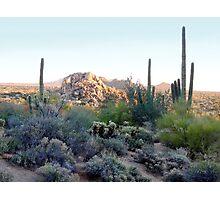 Scottsdale Sunset Photographic Print