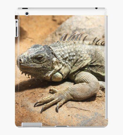 Mary iguana iPad Case/Skin